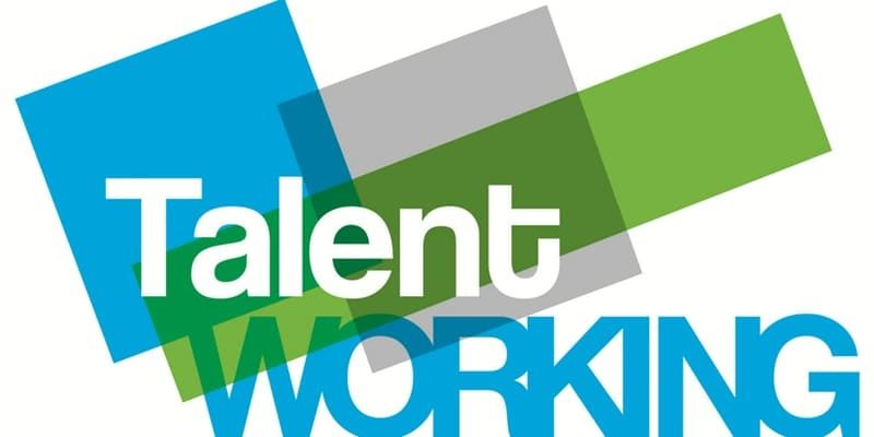 talent working - bando artigianato